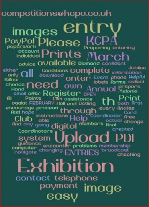 Launch of the KCPA Exhibition 2015